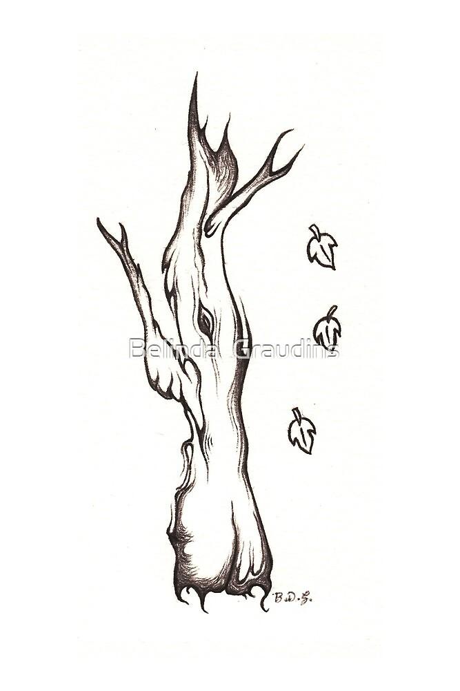 Silkwood by Belinda  Graudins
