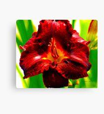 Garnet Beauty Canvas Print