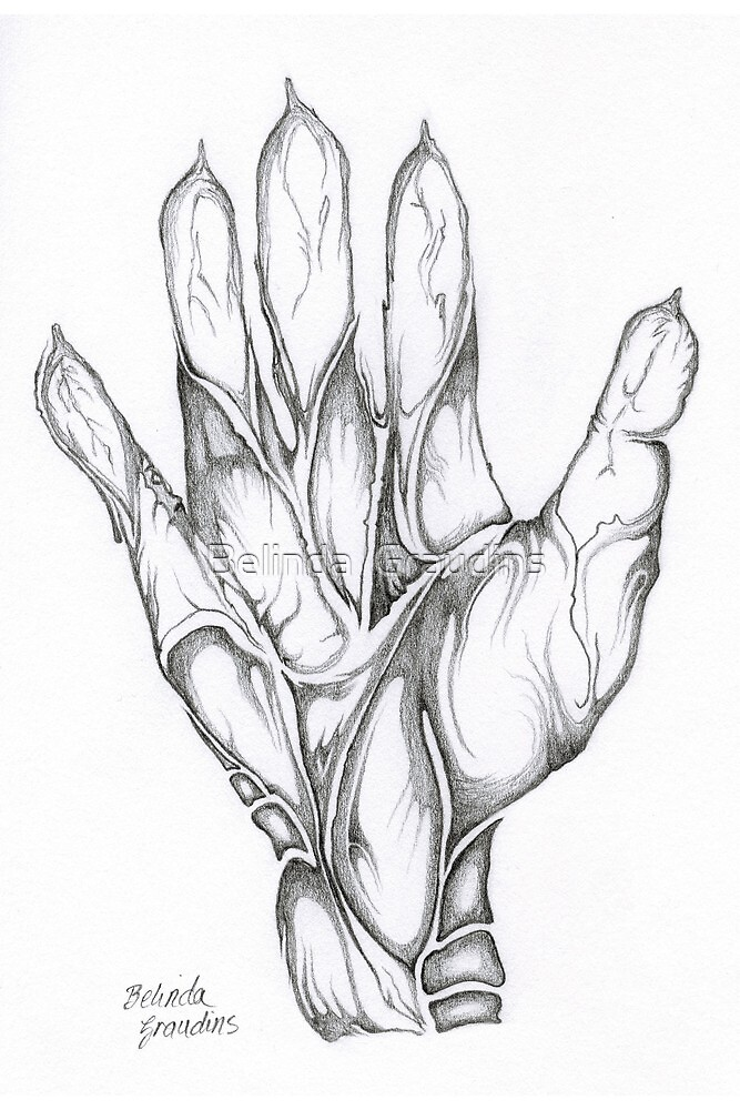 Hand Craft by Belinda  Graudins