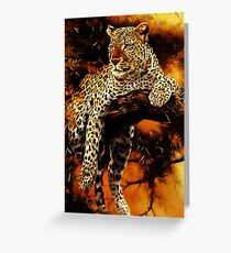 Leopard (Panthera pardus) Greeting Card