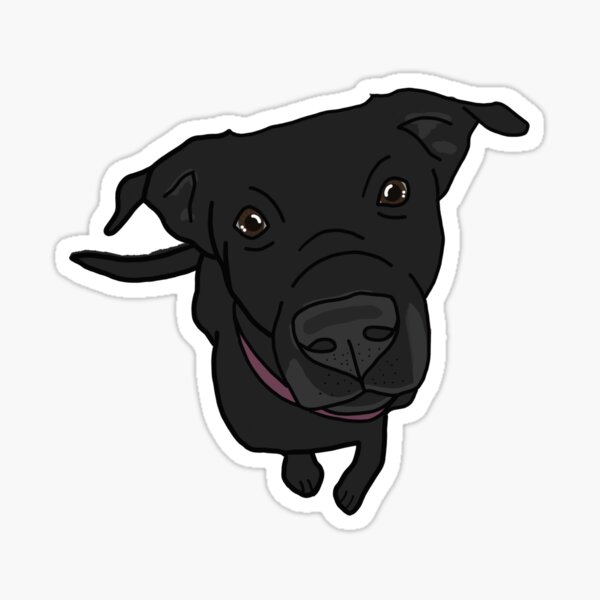 black labrador retriever design Sticker