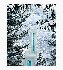 Mount Timpanogos Temple Between the Evergreens 20x24 Photographic Print