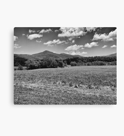 Fields and Mountains - #2 Redux Canvas Print