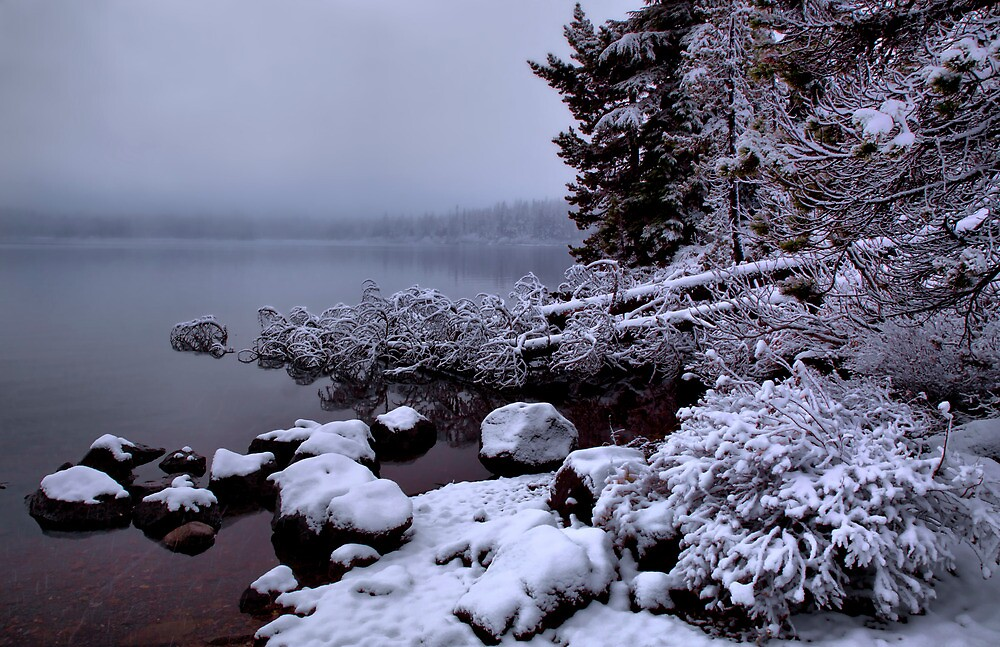 Just A Bit Of The White Stuff by Charles & Patricia   Harkins ~ Picture Oregon