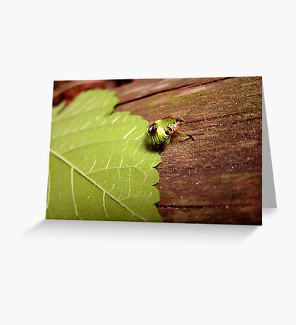 Weird and Green Bug Greeting Card