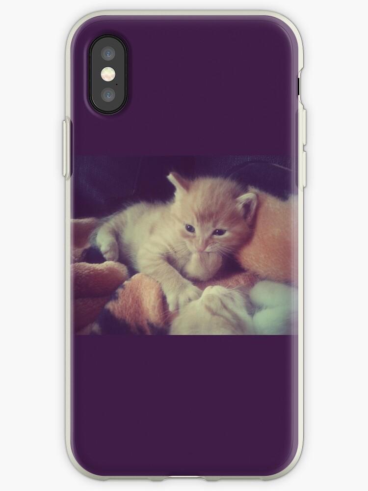 Kitty by Freaxy