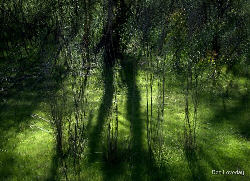Spring Hypnosis by Ben Loveday