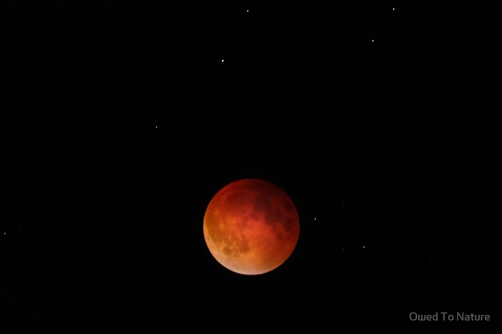 Lunar Eclipse Begins to Wane by Owed To Nature