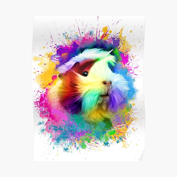 colorful guinea pig Poster
