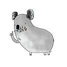 Koala by itsaduckblur