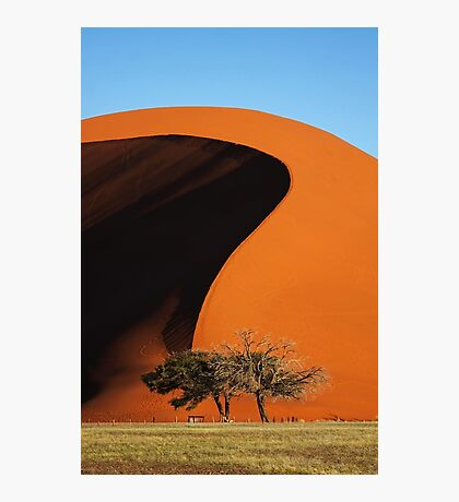 Curving Sands Photographic Print