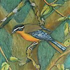 Heuglins Robin by SueDeNym