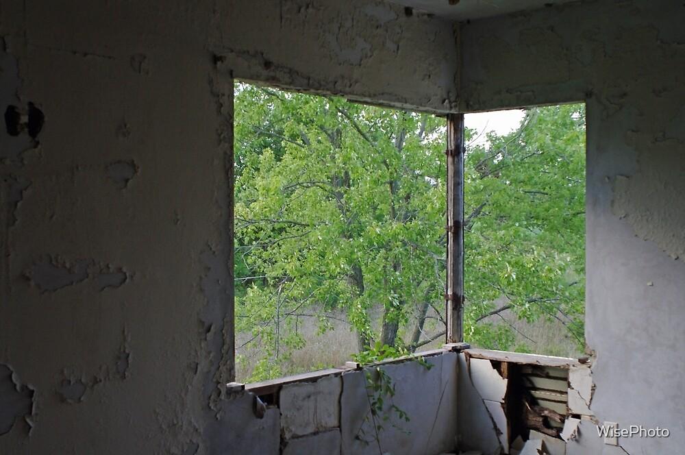 Corner Window by WisePhoto