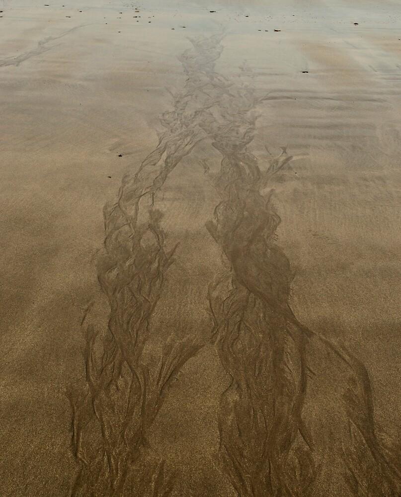 Skaill Bay by Ian Maclellan