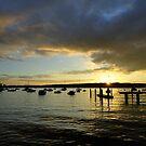 Sunset Watsons Bay, NSW, Australia by Of Land & Ocean - Samantha Goode