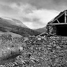 Derelict Barn by Leon Ritchie