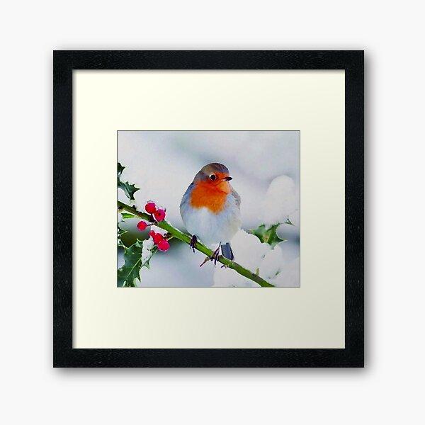 European Robin Framed Art Print
