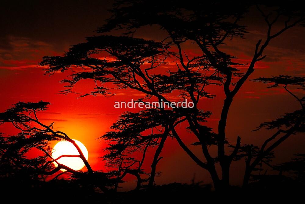 Serengeti sunset by andreaminerdo