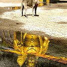 Buddha and the dog in Kuala Lumpur by andreaminerdo