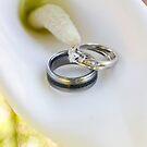 Wedding Rings by Lita Medinger