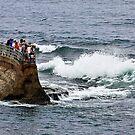 Seawall by Heather Friedman