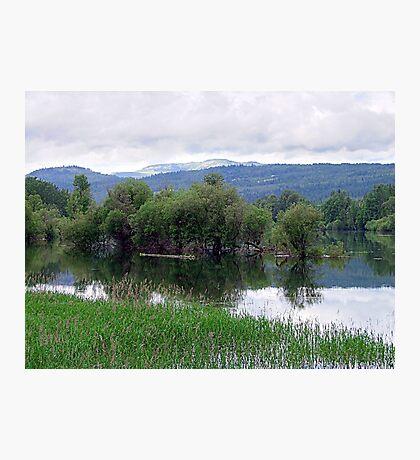 Lake Mara (4) Photographic Print