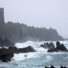 cape clare isle by Edward  manley