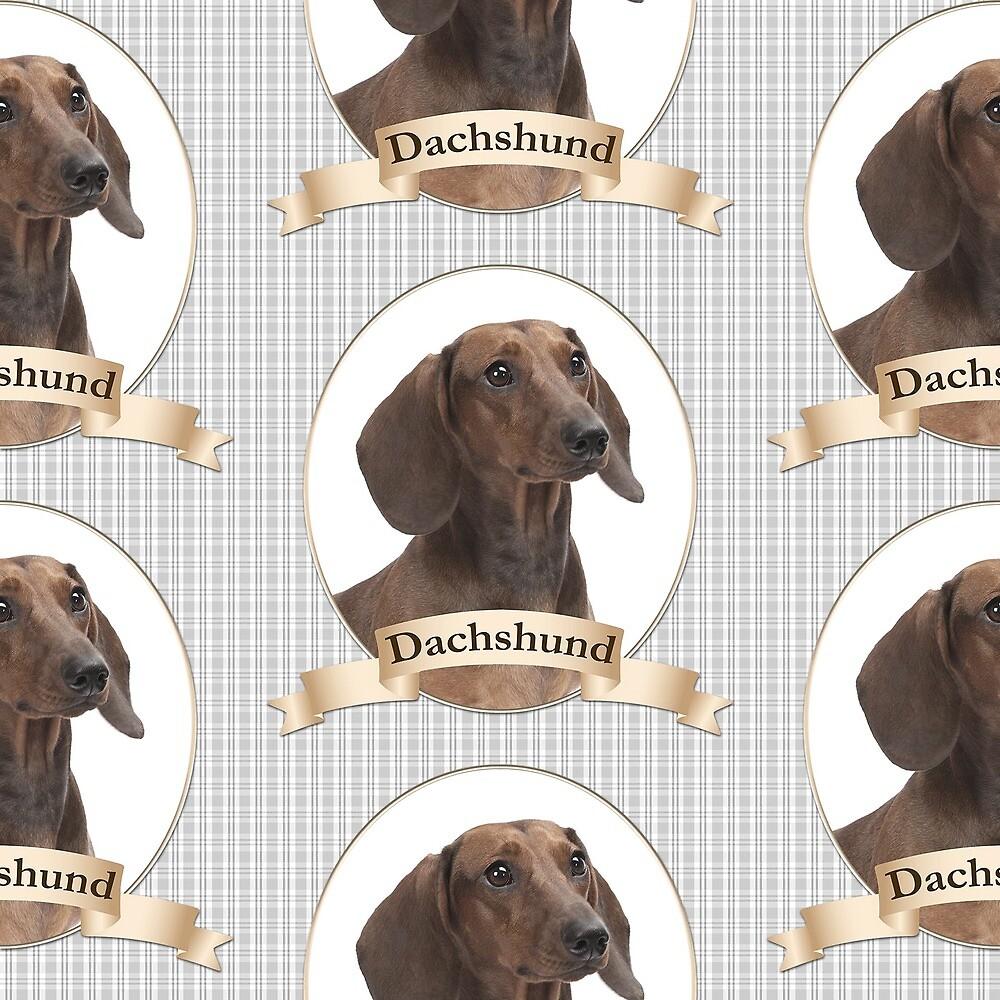 Dachshund Portrait by DogLove