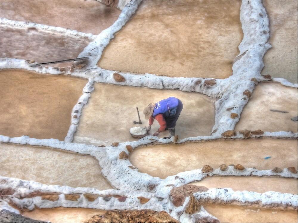 Maras Salineras - Maras, Peru by Edith Reynolds