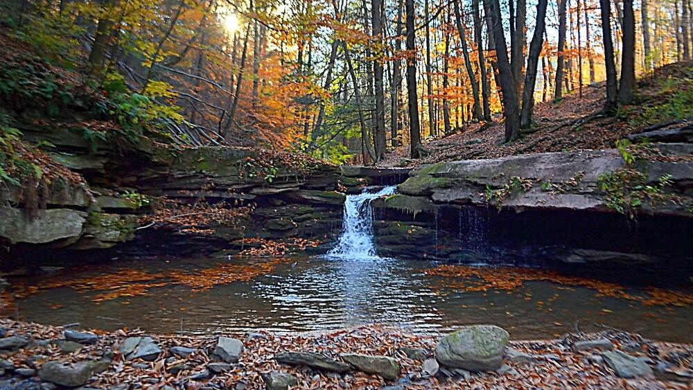Autumn Falls by Tgarlick