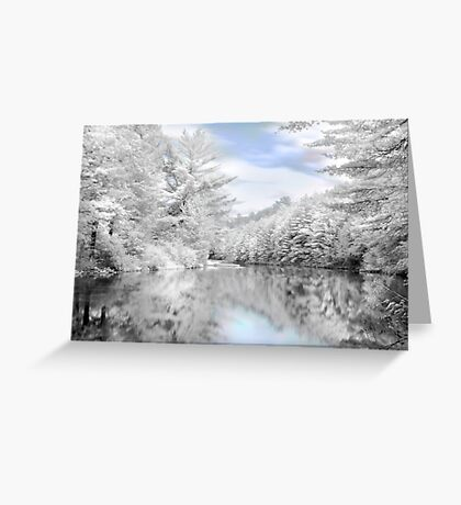 Winter at the Reservoir Greeting Card