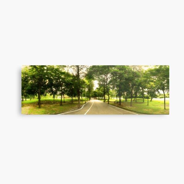 Path Less Traveled - Park Panorama Metal Print