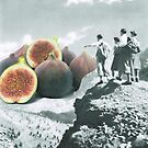 Fig dreams  by Sophie Moates