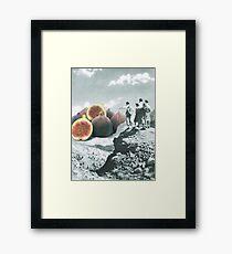 Fig dreams  Framed Print