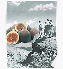 Fig dreams  Poster
