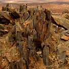 Outback outcrop! by su2anne