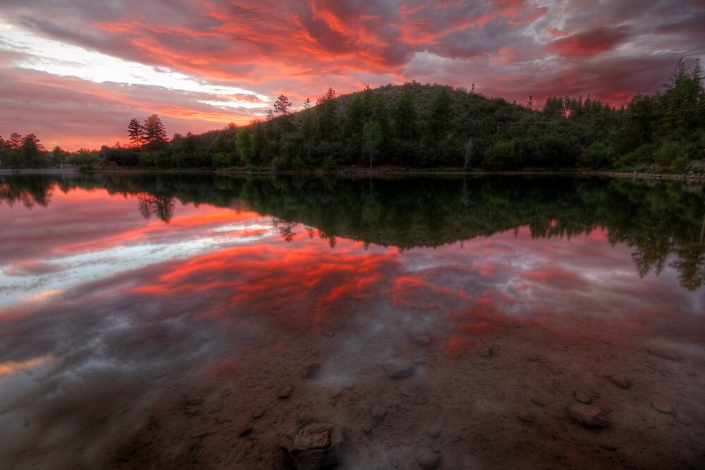 Red Spread by Bob Larson