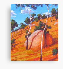 Twins at Bendemeer Canvas Print