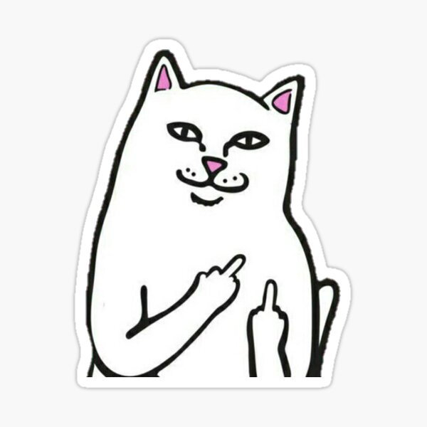 Calico Cat Middle Finger Sticker Decal Funny Vinyl Large 5 x 3 for Laptop car Water Bottle Cat Gag Gift
