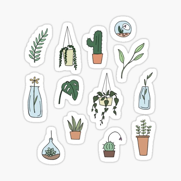 Plante mignonne minimale succulente Sticker