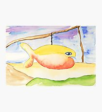 Hang on there Photographic Print