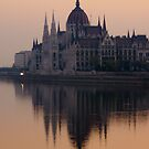Last Light on the Danube by Cliff Williams