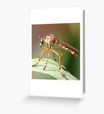 buggie Greeting Card