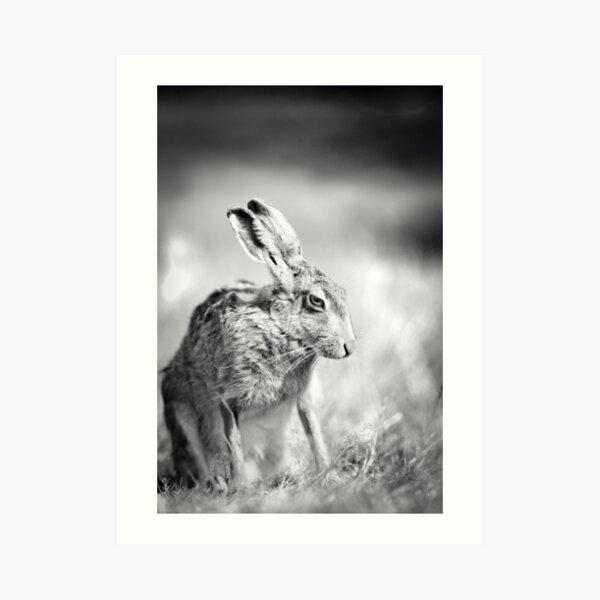 Moon Hare Art Print