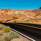 Desert Roads by Dave Hare