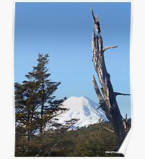 Mt. Ngauruhoe Poster