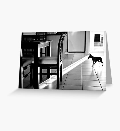 the Dog with X-Ray Vision Greeting Card