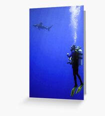 Watching the Oceanic Whitetip Greeting Card
