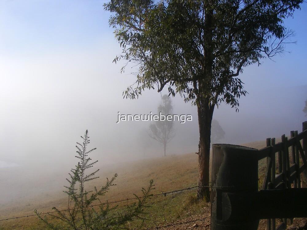 Misty Morning by janewiebenga