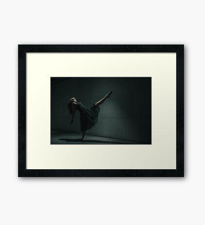 _DSC2411 Framed Print